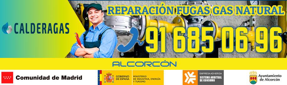 Reparación fugas de gas natural en Alcorcón